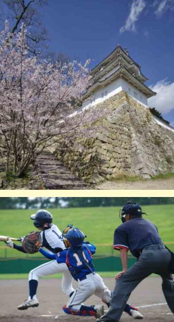 県立明石公園の活性化